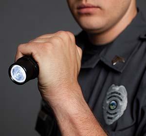Detail Perimeter Security Case Study